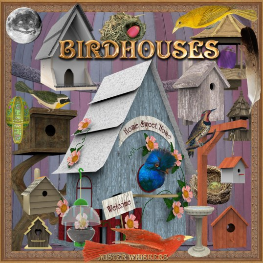 mr_whiskers_birdhouse_flyer_900px